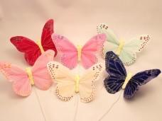 羽の蝶ちょ6匹セット(L)A