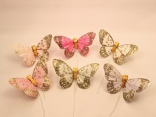 羽の蝶ちょ6匹セット(S)B