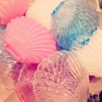 かわいいプラスチックのシェルケース入荷*渋谷ヒカリエ