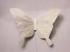 羽の蝶ちょ ホワイトLサイズ