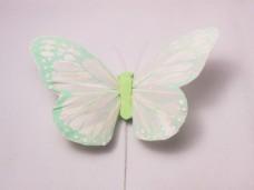 羽の蝶ちょ ミントグリーン
