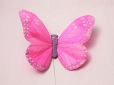 羽の蝶ちょ ピンク