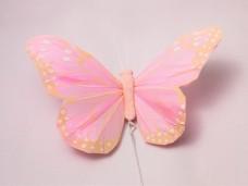 羽の蝶ちょ ベビーピンク